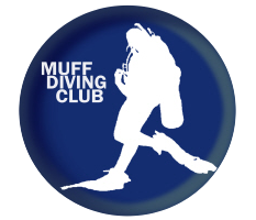 Muff Diving Club